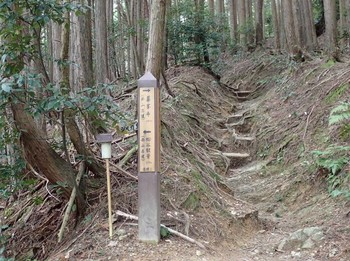 西山古道.JPG